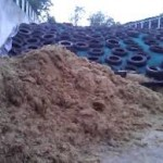 Poor quality silage